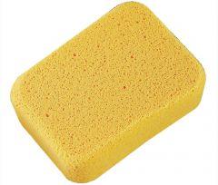 Large Sponges (Set of 2)